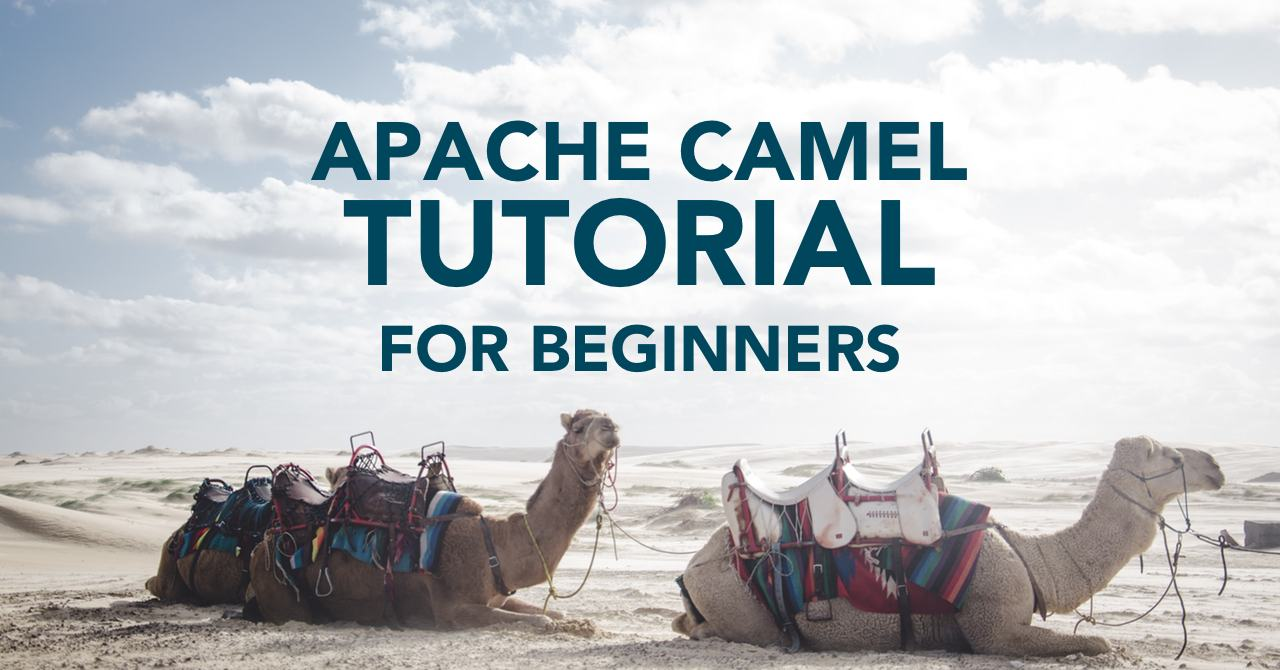 Apache Camel Tutorial - Tom Donohue