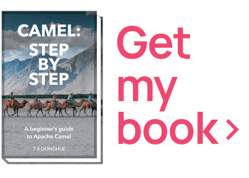Buy my Camel Step-by-Step book